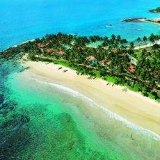 Незабываемый отдых на острове Шри-Ланка