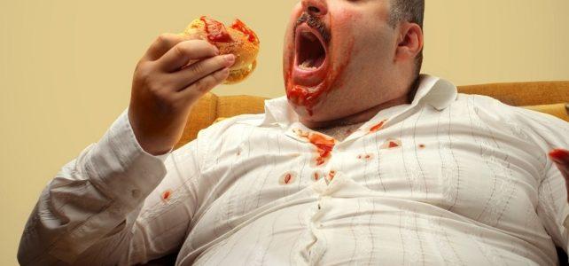 Жизнь толстого человека