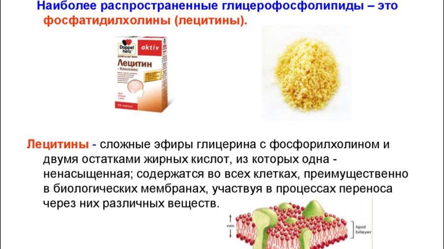 Фосфатидилхолин